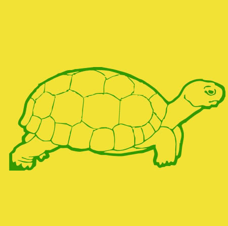 Entourage Turtle T-shirt