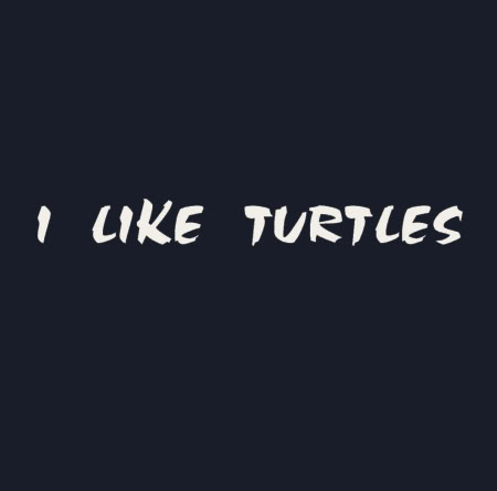 i Like Turtles Tshirt i Like Turtles t Shirt